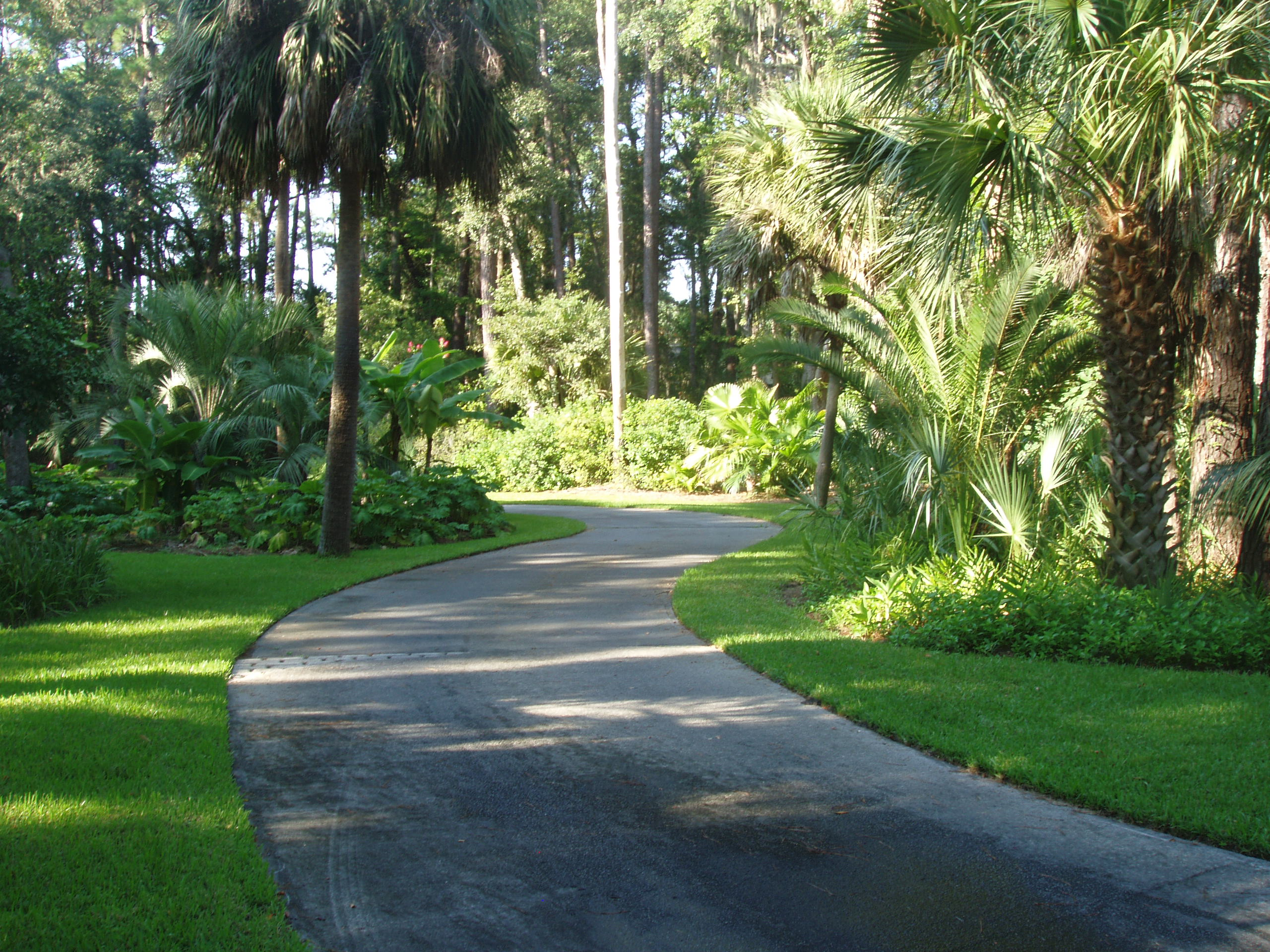 Curved Driveway Landscaping